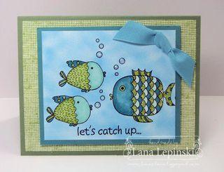 FishyCatchup